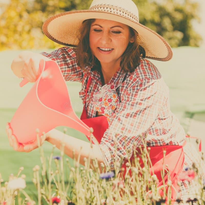 Kobiety podlewanie kwitnie w ogródzie obrazy royalty free
