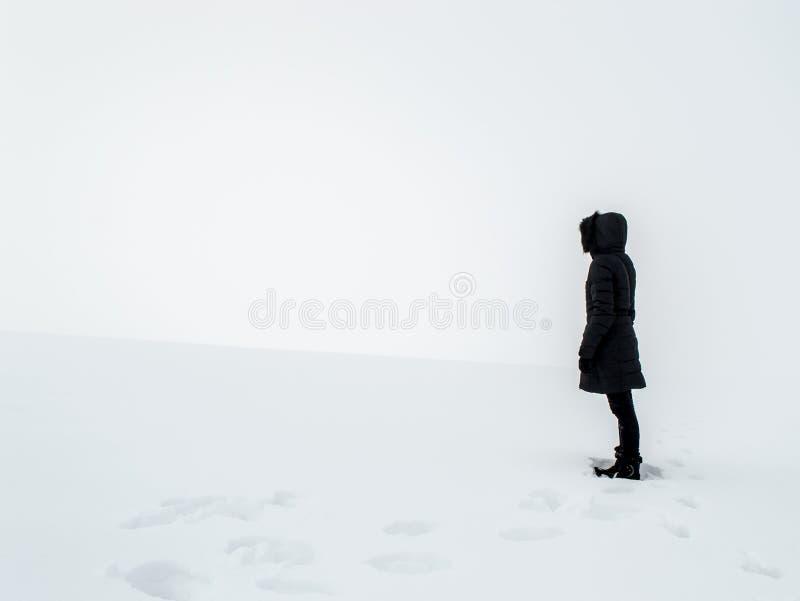 Kobiety pozycja w śnieżnym polu obraz royalty free