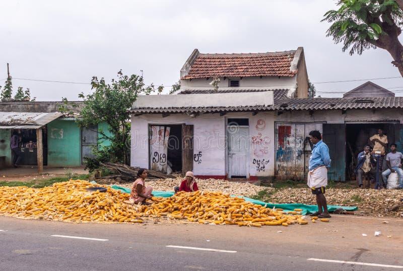 Kobiety praca podczas gdy mężczyzny zegarek, Angadihalli Karnataka India obraz royalty free