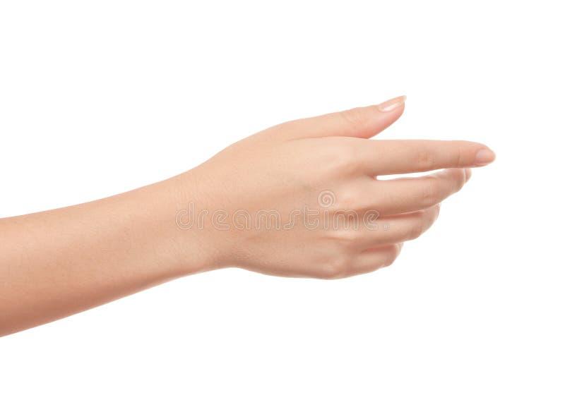 Kobiety ręka zdjęcie stock