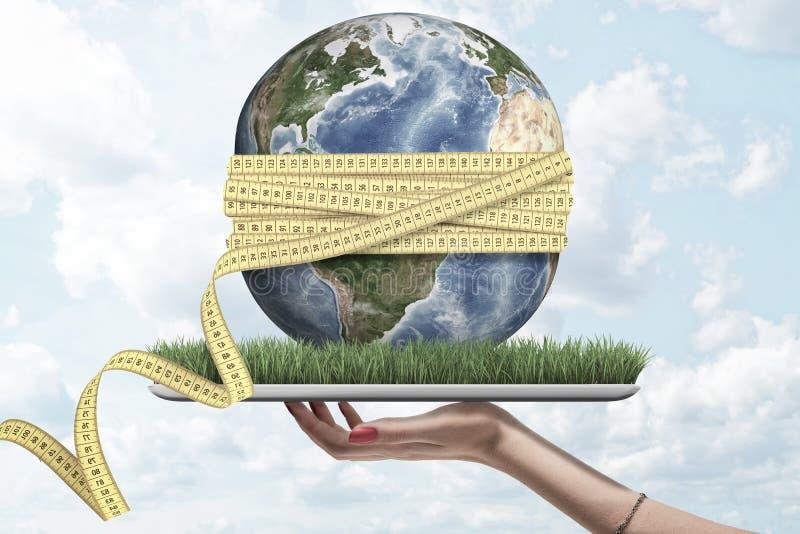 Kobiety ręka trzyma cyfrową pastylkę z trawy dorośnięciem na ekranie, mała ziemia na wierzchołku z żółtą pomiarową taśmą zawijają ilustracja wektor