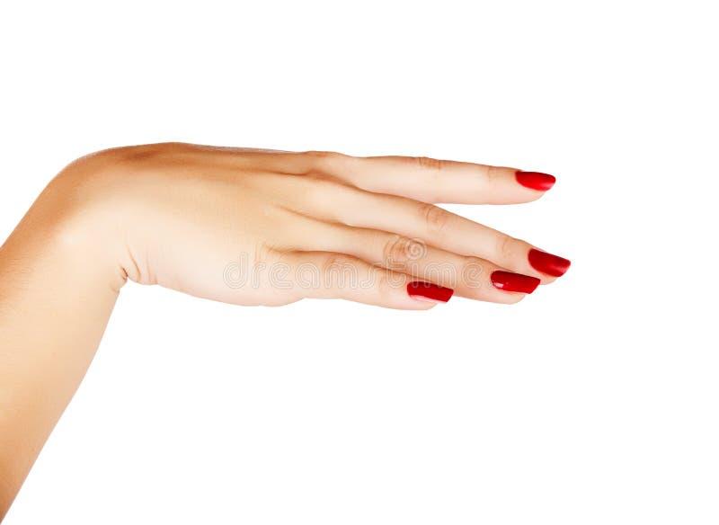 Kobiety ręka z czerwonym gwoździa manicure'em obrazy royalty free