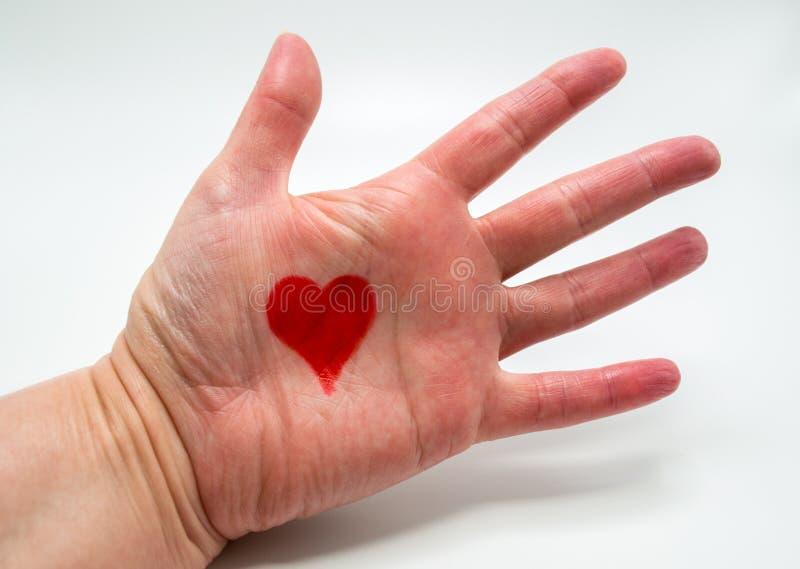 Kobiety ręka z czerwonym sercem rysującym w palmie odizolowywającej na bielu fotografia royalty free