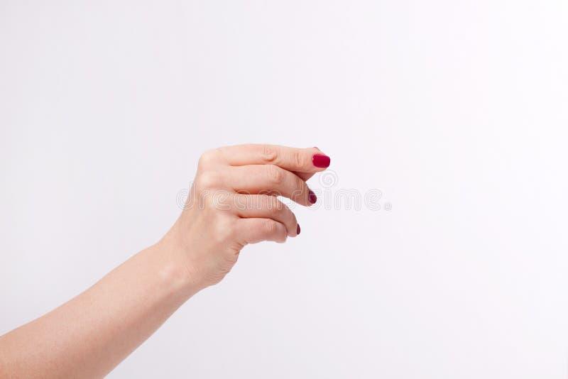 Kobiety ręka z czerwonymi manicure gwoździami lub ręka trzymamy ładunek kartę na białym tle Odbitkowa przestrzeń up i egzamin pró zdjęcie stock