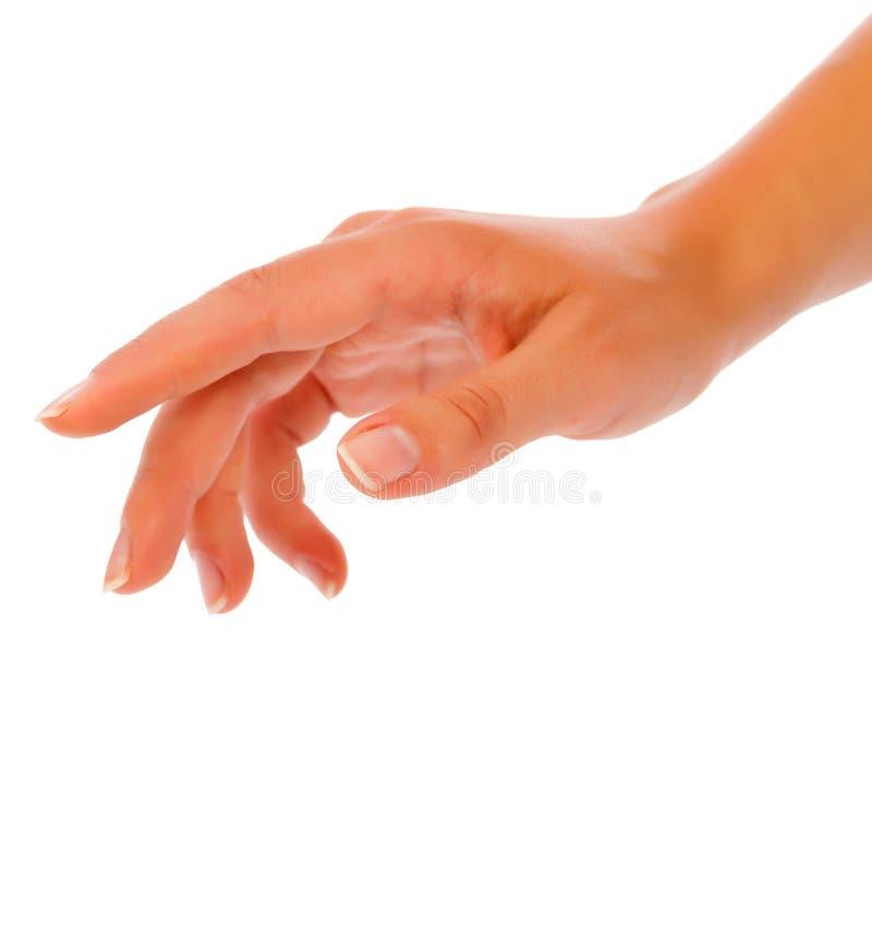 Kobiety ręki dojechanie obraz stock