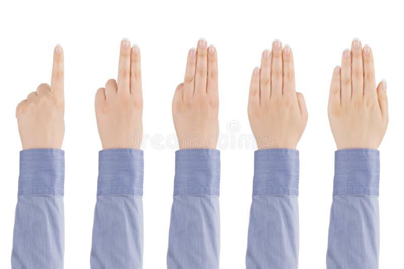 Kobiety ręki obliczenia od jeden pięć. obrazy royalty free