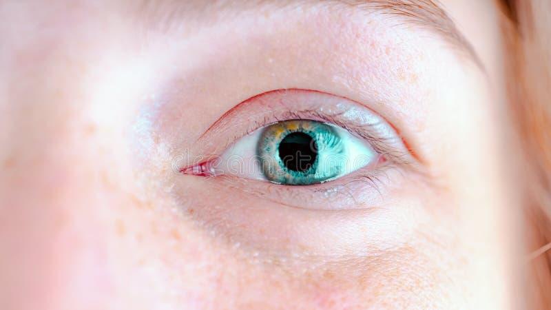 Kobiety ` s niebieskie oczy bez makeup Fotografia przygląda się makro- zdjęcia royalty free