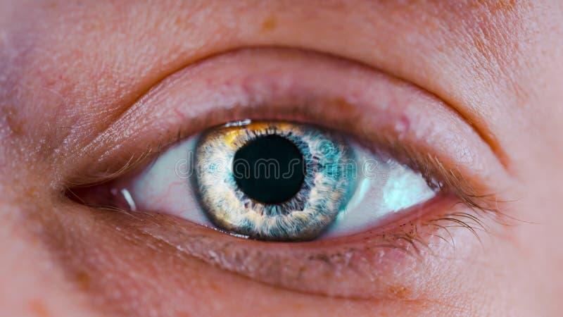 Kobiety ` s niebieskie oczy bez makeup Fotografia przygląda się makro- obrazy royalty free