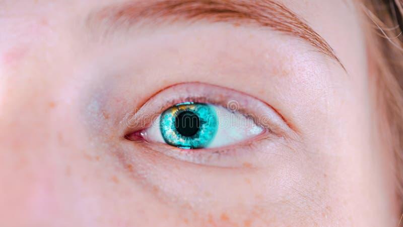 Kobiety ` s niebieskie oczy bez makeup Fotografia przygląda się makro- zdjęcie royalty free