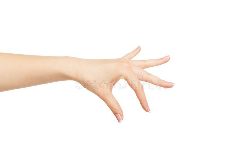 Kobiety ` s ręka podnosi up coś, uprawa, wycinanka zdjęcia stock
