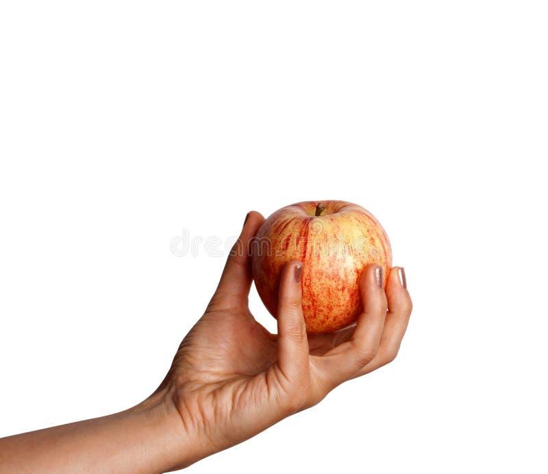 Kobiety ` s ręki mienia czerwieni jabłko pojedynczy białe tło zdjęcia stock