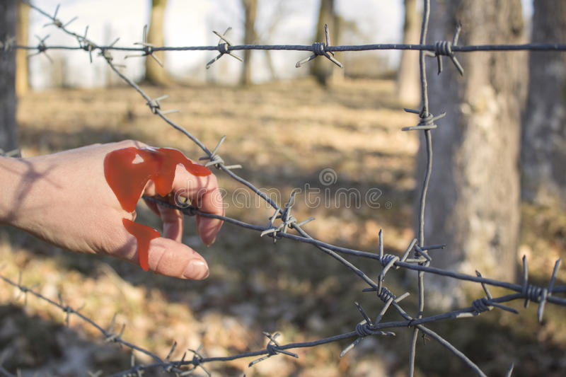 Kobiety ` s ręki mienia drutu kolczastego ogrodzenie dla emocjonalnej niewoli i chce bezpartyjnik obrazy royalty free