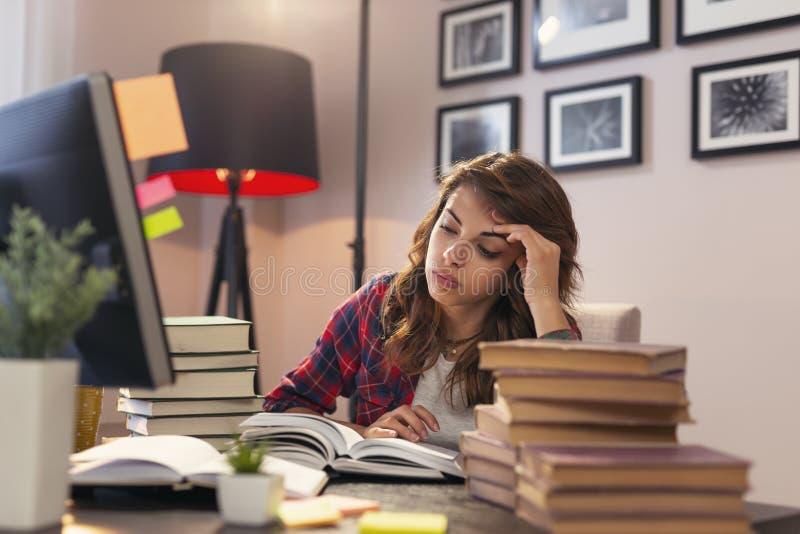 Kobiety studiowanie zdjęcia stock