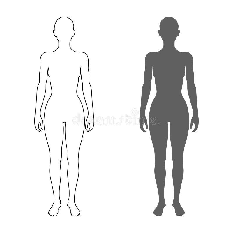 Kobiety sylwetka i kontur ilustracja wektor