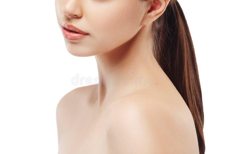 Kobiety szyi ramienia warg nosa podbródka policzki obraz royalty free