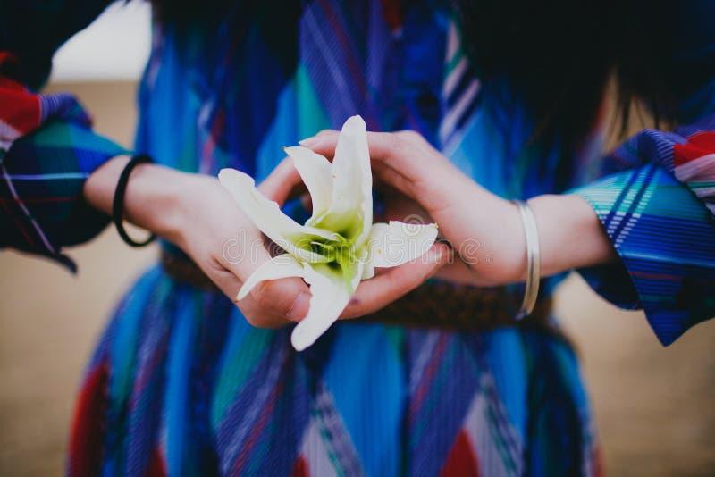 Kobiety trzyma lilium fotografia stock