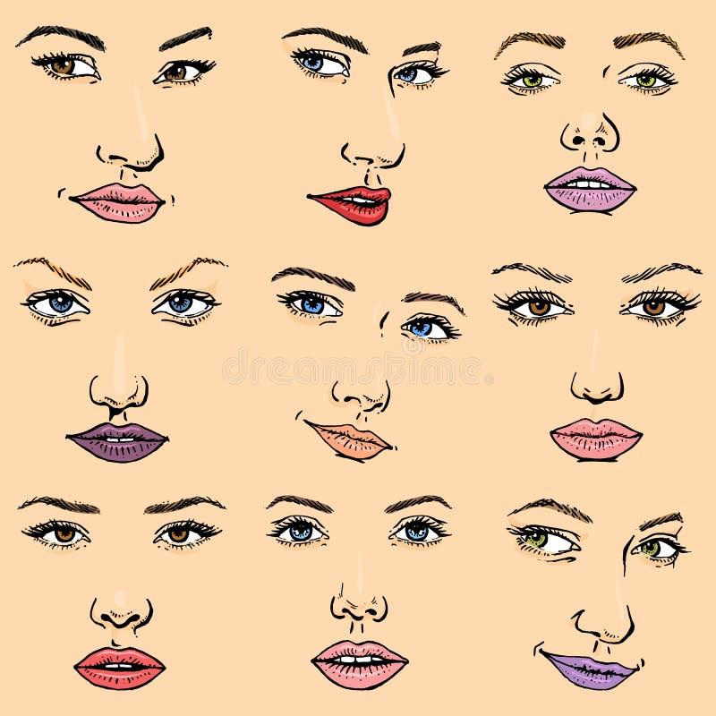 Kobiety twarzy wektorowy żeński twarzowy portret piękna dziewczyny moda stawiał czoło opiekę i piękne kobiety stawia czoło makeup ilustracja wektor