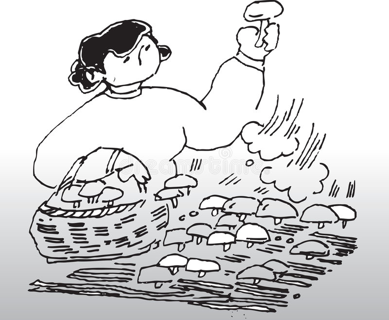 Kobiety zrywania pieczarki royalty ilustracja