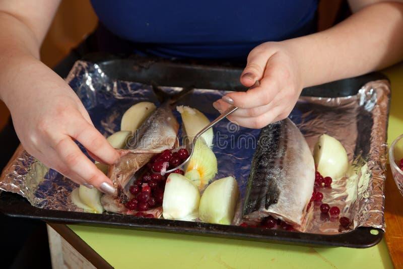 Koch, der Makrele mit Moosbeeren bildet stockfotografie