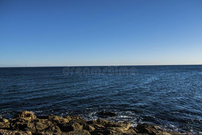 kocha morze obrazy royalty free