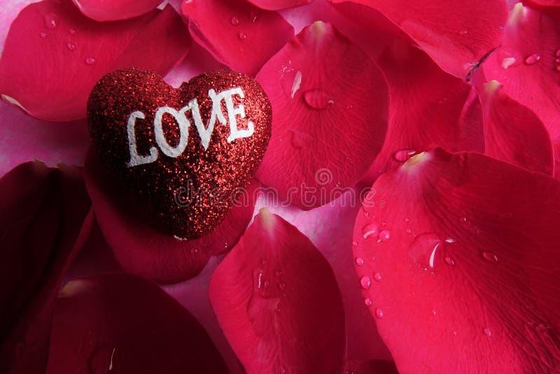 KOCHAJĄCY pojęcie z czerwieni róży płatkami i drukujący słowo miłość na czerwonym kierowym kształcie zdjęcie stock