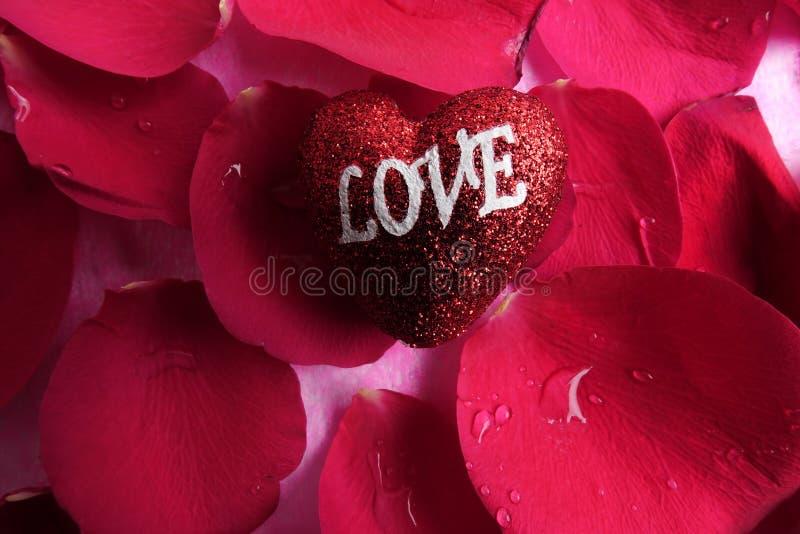 KOCHAJĄCY pojęcie z czerwieni róży płatkami i drukujący słowo miłość na czerwonym kierowym kształcie obraz stock