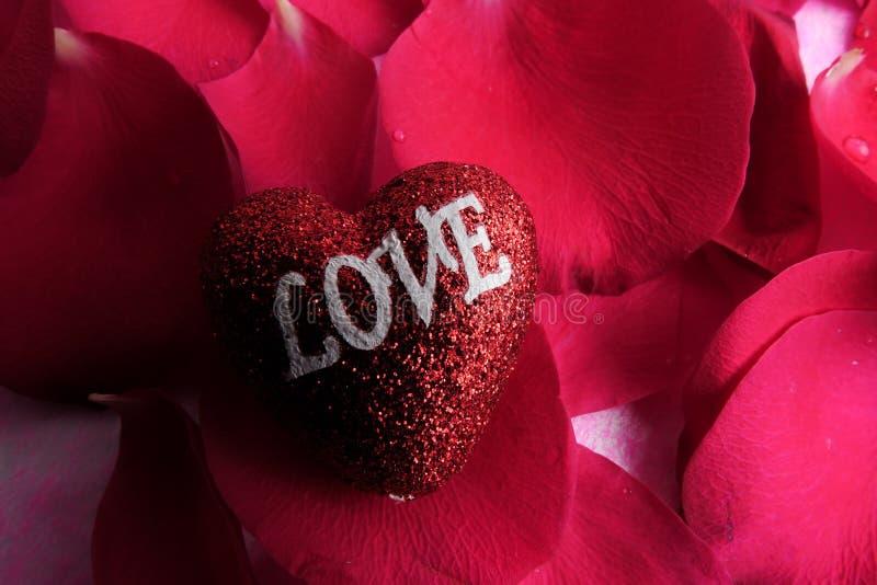 KOCHAJĄCY pojęcie z czerwieni róży płatkami i drukujący słowo miłość na czerwonym kierowym kształcie obrazy stock