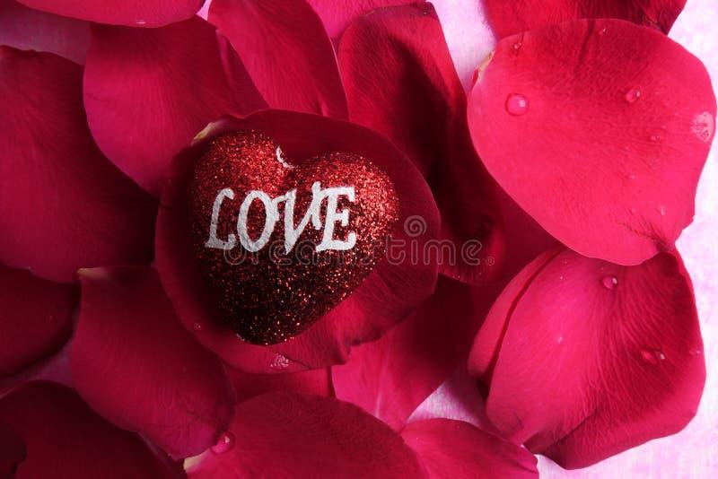 KOCHAJĄCY pojęcie z czerwieni róży płatkami i drukujący słowo miłość na czerwonym kierowym kształcie obrazy royalty free