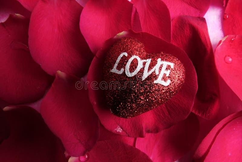 KOCHAJĄCY pojęcie z czerwieni róży płatkami i drukujący słowo miłość na czerwonym kierowym kształcie zdjęcia royalty free