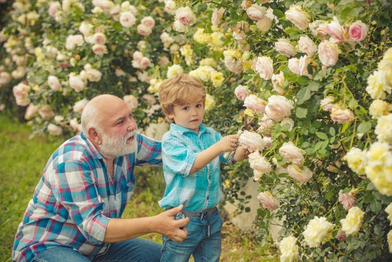 Kocham nasz momenty w wsi - pamięta czas Ogrodnictwo hobby szcz??liwe ogrodniczki z wiosna kwiatami dziady zdjęcia stock