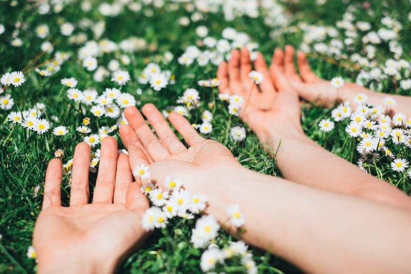 Kochankowie relaksuje kłamać na wiosna kwiatach obraz stock