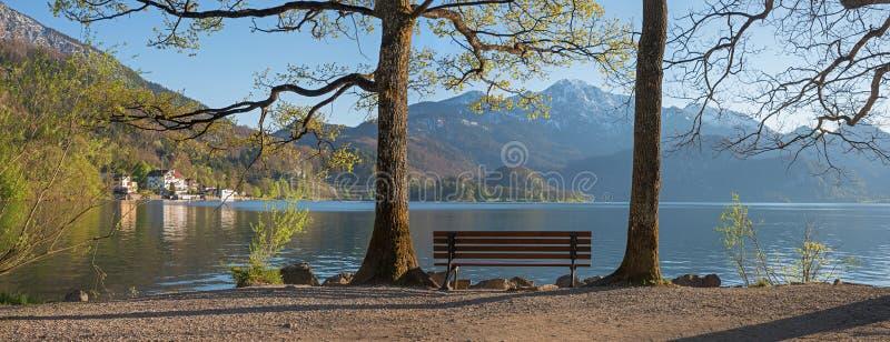 Kochelsee idyllique de rivage de lac, avec le banc et les arbres de germination image libre de droits