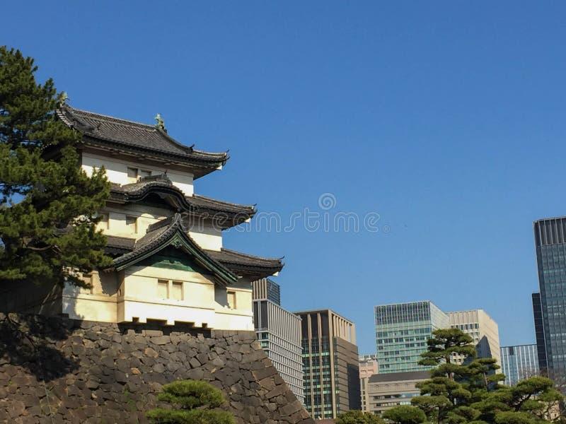 Kochi, Japão - 26 de março de 2015: Vista geral do castelo de Kochi dentro imagens de stock