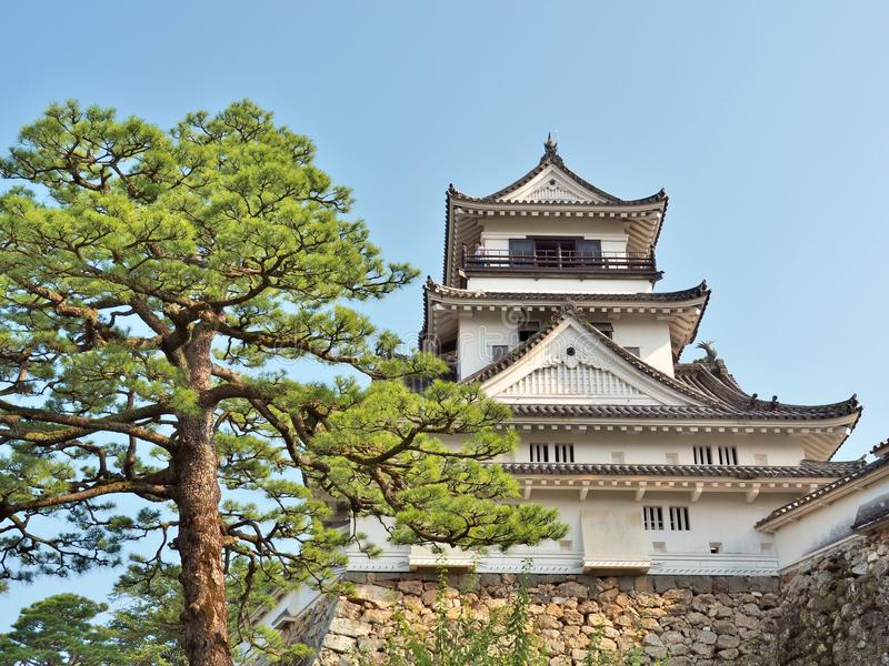 Kochi-Schloss in Kochi-Präfektur, Japan lizenzfreie stockbilder