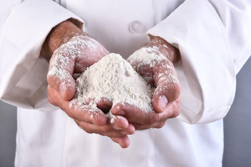 Kock Holding Flour fotografering för bildbyråer