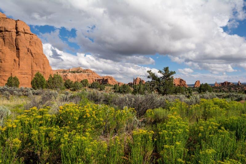 Kodachrome-Becken-Nationalpark, Utah, USA stockfoto