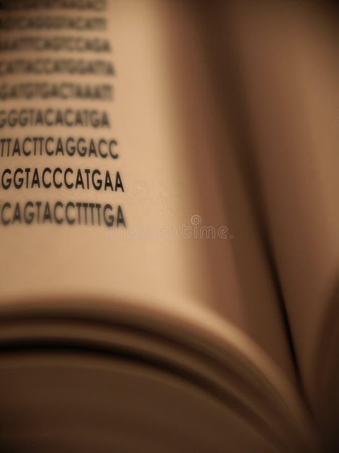 Download Kodad genetiskt fotografering för bildbyråer. Bild av genom - 510151