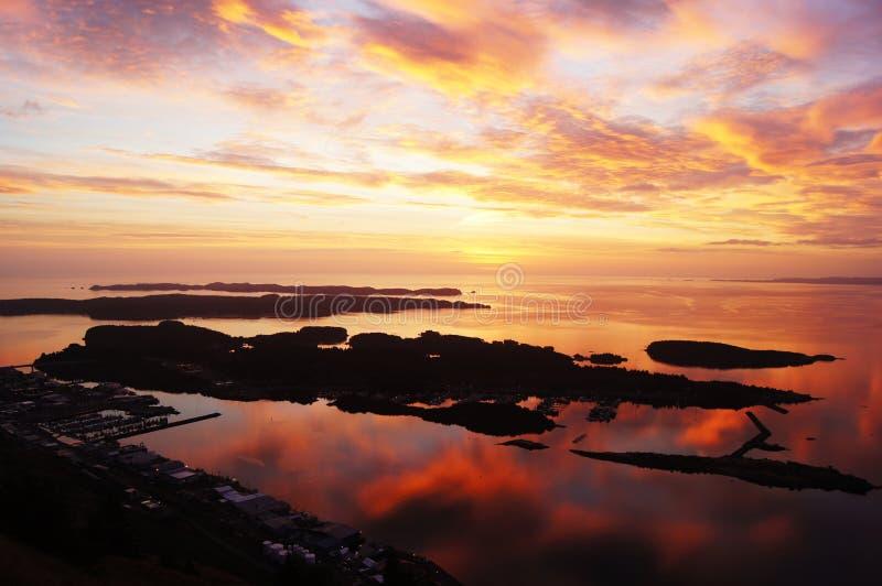 Kodiak för bra morgon arkivfoto