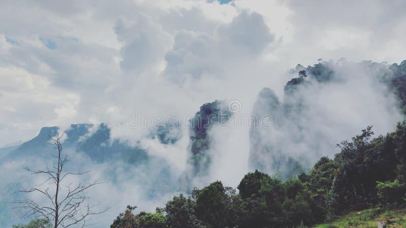 Kodiakanal tourism. Kodaikanal pillar rocks viewpoint stock photo