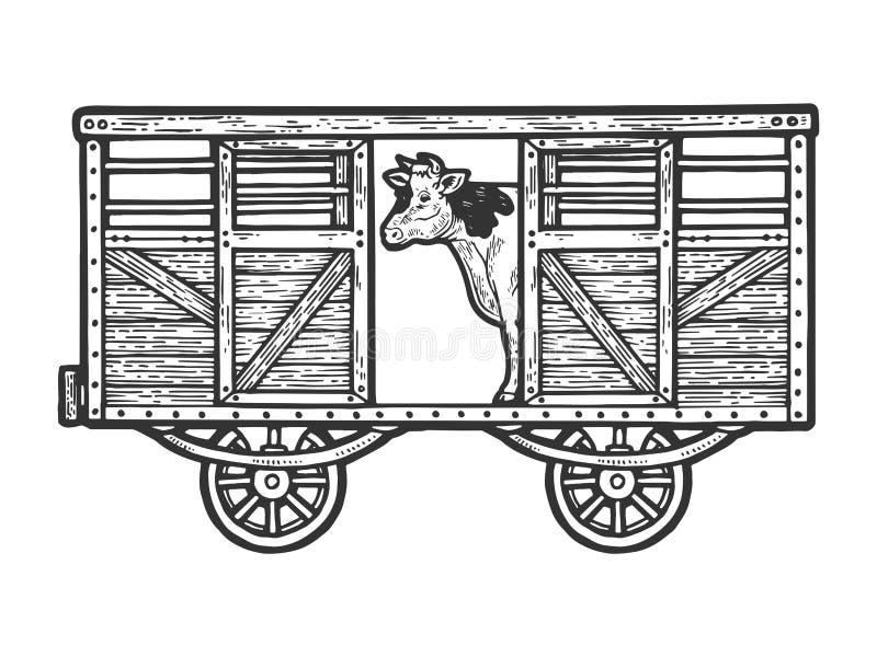 Koe in de vector van de de schetsgravure van het spoorwegvervoer royalty-vrije illustratie