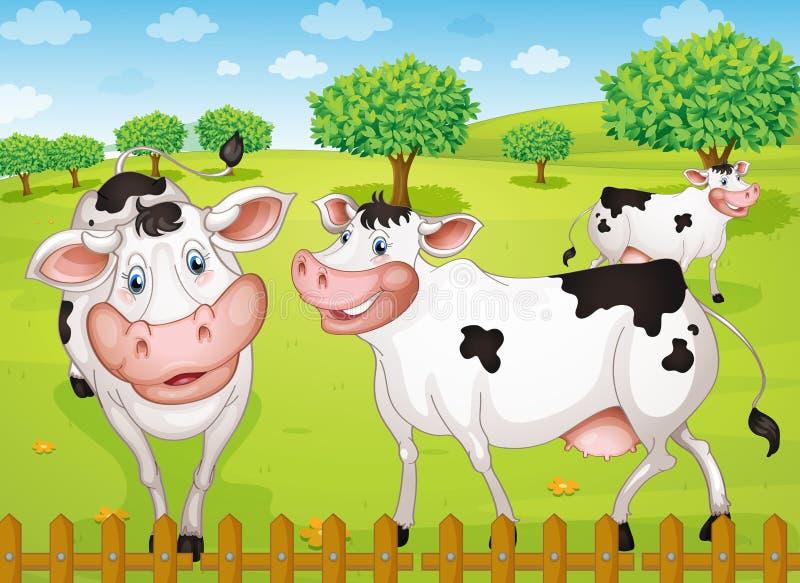 Koeien die in landbouwbedrijf weiden vector illustratie