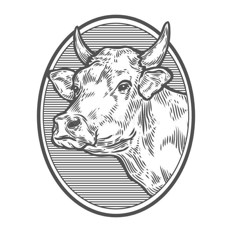 Koeien hoofdportret Hand getrokken schets in een grafische stijl Uitstekende vectorgravure royalty-vrije stock afbeeldingen