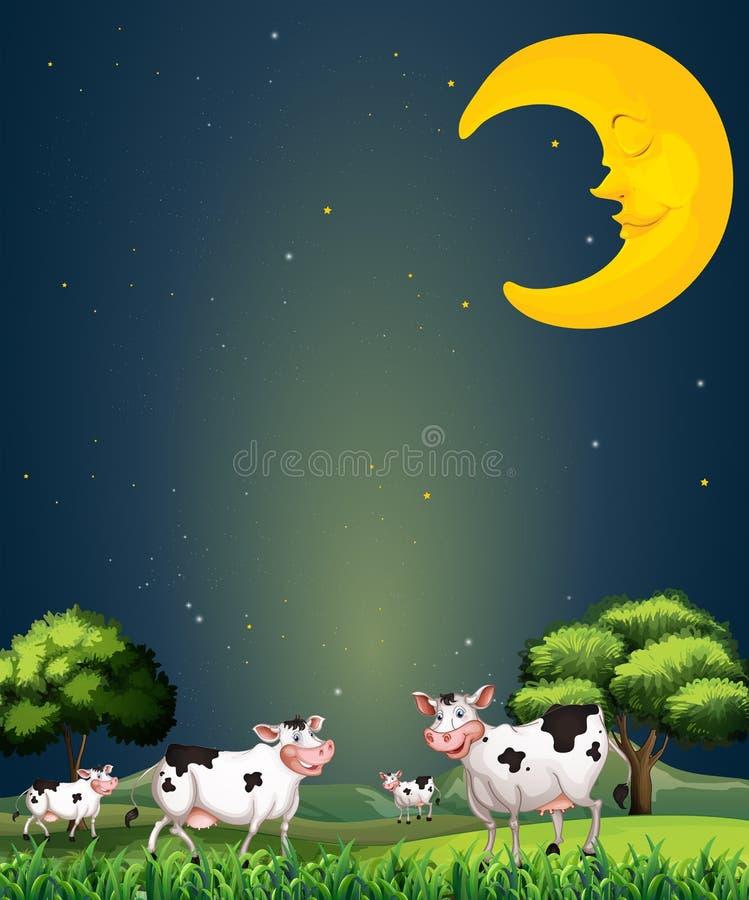 Koeien onder de slaapmaan vector illustratie