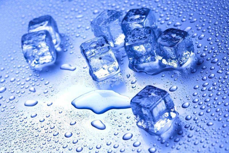 Koel en ijs, koude en verse concept royalty-vrije stock afbeeldingen