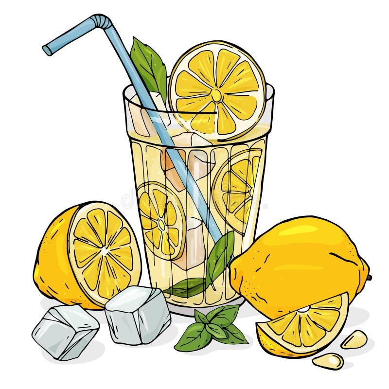 Koele limonade in een glaskop met ijs en munt Een gehele citroen, half en plak met zaden royalty-vrije illustratie