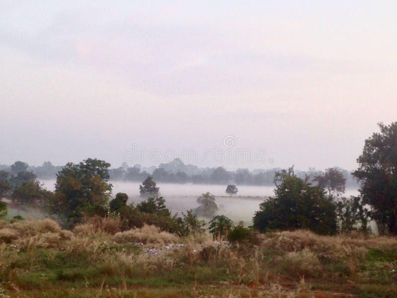 Koele mist in de ochtend Maha Sarakham, Thailand royalty-vrije stock foto's