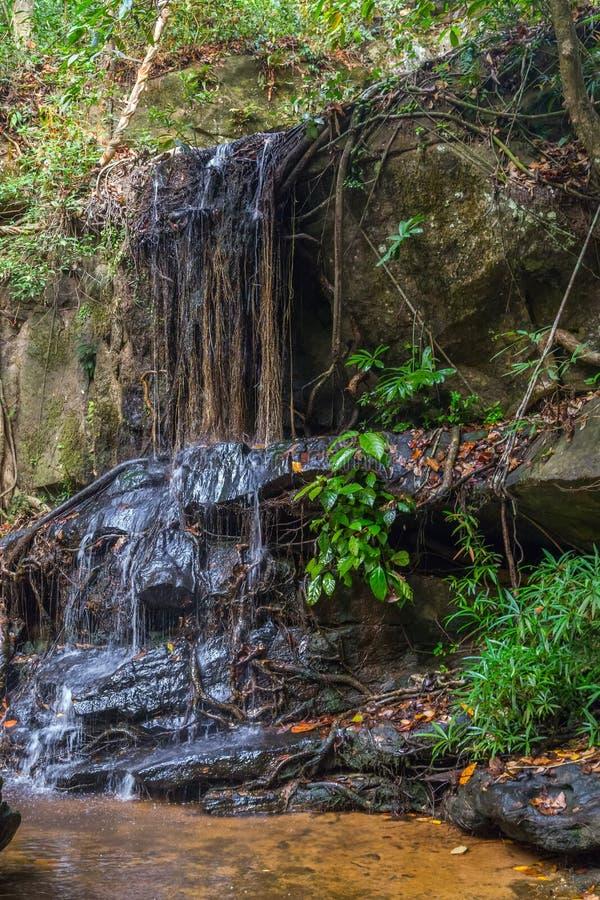 Koele waterwaterval in het Regenwoud, Phnom Kulen Kambodja royalty-vrije stock foto's