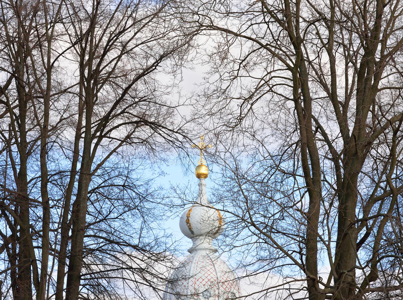 Koepel van de Kerk van de het klooster en de boomtakken van Smolny royalty-vrije stock afbeeldingen