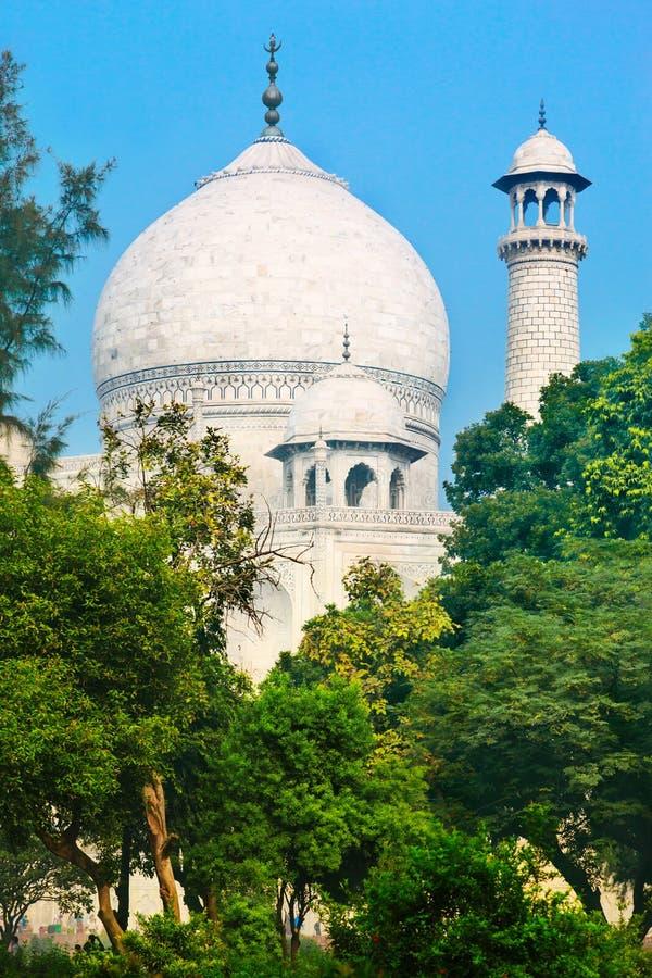 Koepel van Taj Mahal stock afbeeldingen
