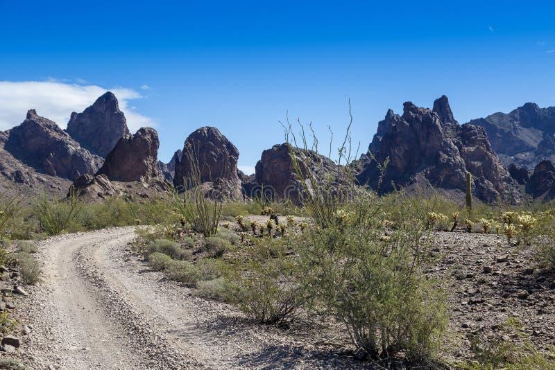 Kofa女王山谷路在亚利桑那 库存图片